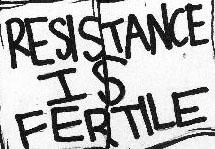 fertile.jpg