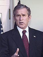 Bush_TIA_droop_2.JPG