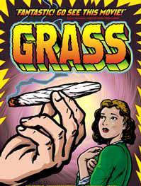 grass27.jpg