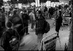 solidarity_2-11-04.jpg