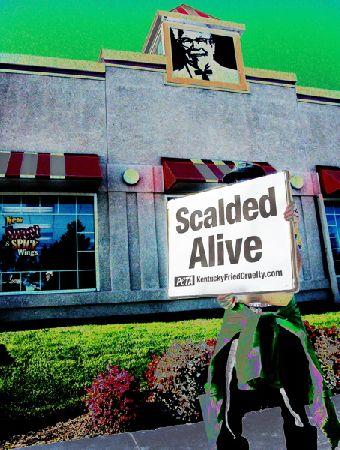 scalded-alive_11-5-05.jpg